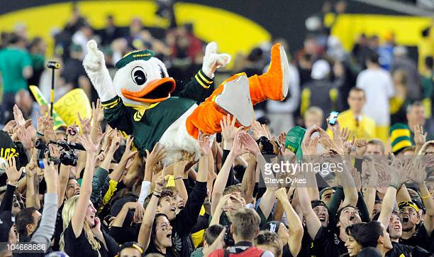 Puddles the Oregon Duck mascot is carried on the shoulders of fans on the feild of Autzen Stadium after the Oregon Ducks beat the Stanford Cardinal...