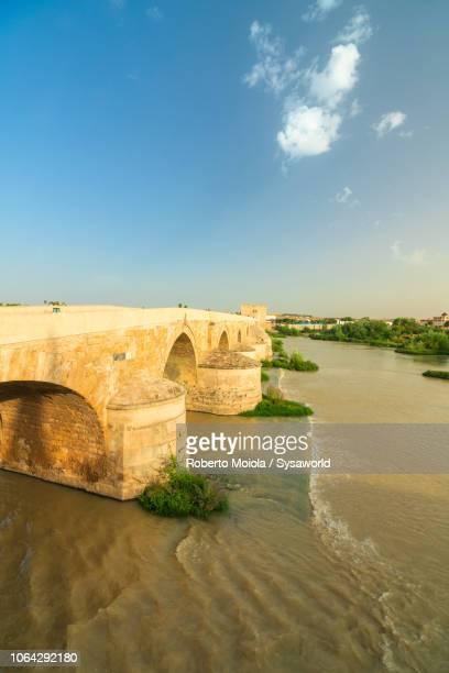 puente romano (roman bridge), cordoba - ancient history stock pictures, royalty-free photos & images