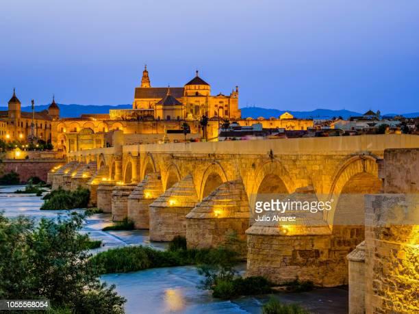 puente romano y mezquita de cordoba - roman bridge and mosque of cordoba - moruno fotografías e imágenes de stock