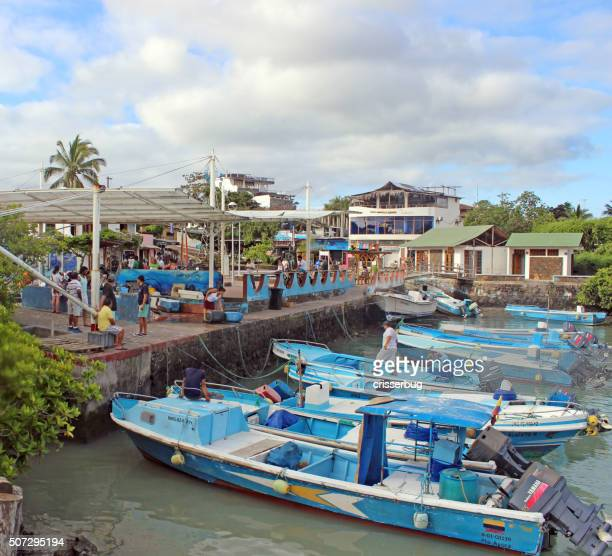 puerto ayora in the galapagos - puerto ayora stock pictures, royalty-free photos & images