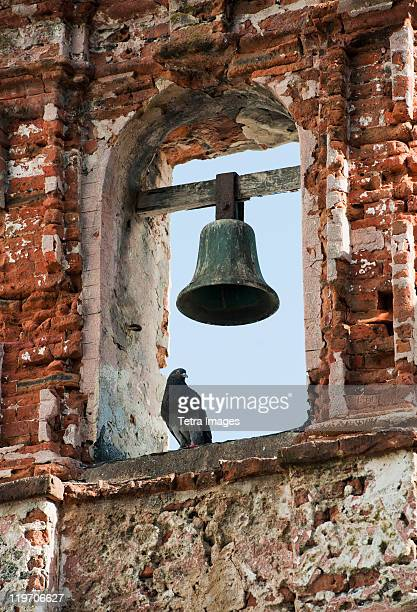 Puerto Rico, Old San Juan, pigeon perched on bell tower