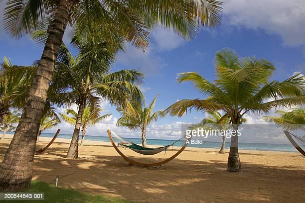Puerto Rico, San Juan, Isla Verde Beach
