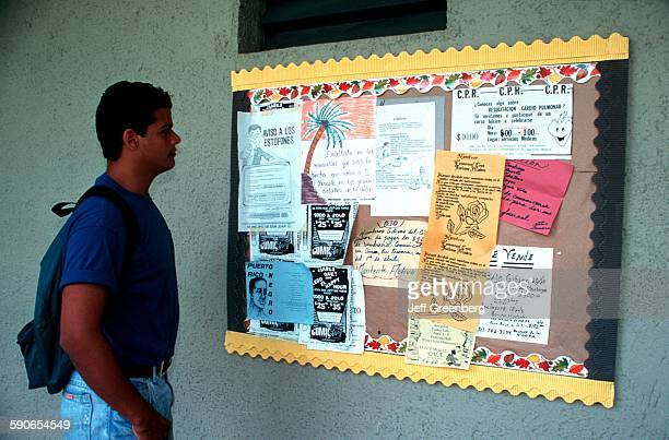 Puerto Rico San Juan San Juan University Student Looking At Campus Bulletin Board