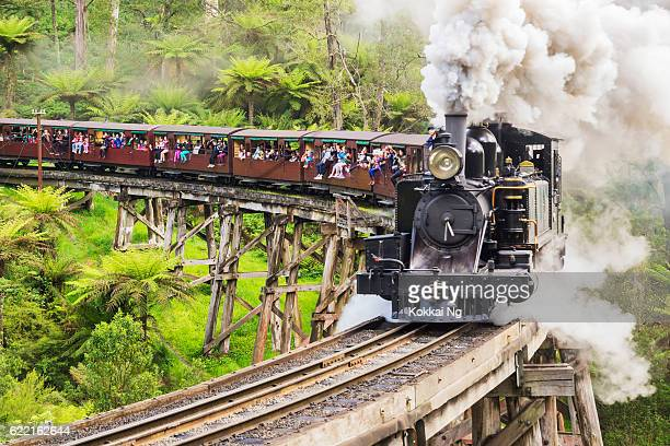 puffing billy railway train - dandenong stock photos and pictures