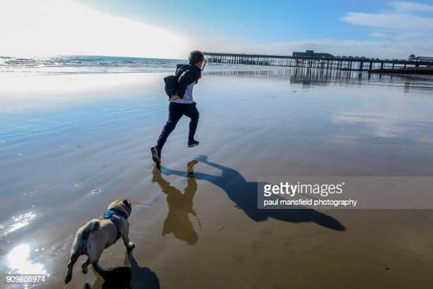 Pug chasing boy on beach