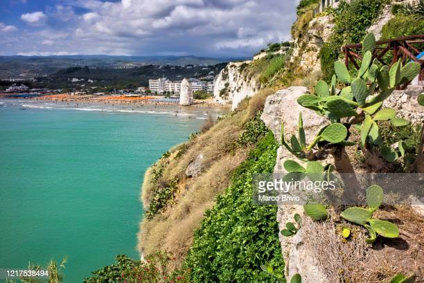puglia apulia italy. vieste gargano. pizzomunno beach - marco brivio stock pictures, royalty-free photos & images