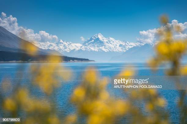 Pukaki lake and Mt.Cook with turquoise lake Mountain and Blue sky