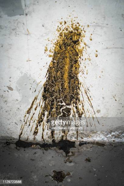 puke on a wall - vomit stock pictures, royalty-free photos & images