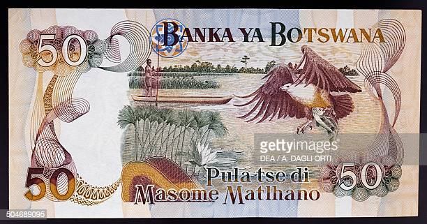 50 pula banknote 19901999 reverse depicting a man in a canoe and fish eagle Botswana 20th century