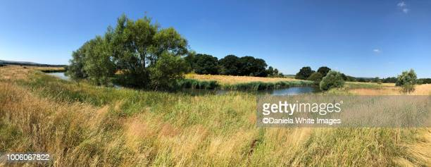 pulborough brooks  nature reserve - west sussex stock pictures, royalty-free photos & images