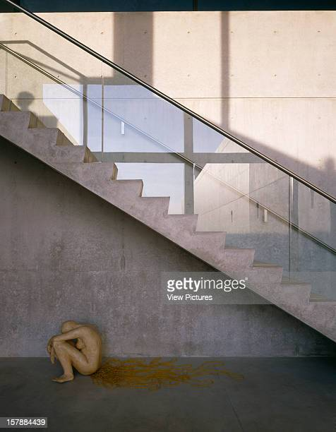 Pulitzer Foundation For The Arts St Louis United States Architect Tadao Ando Pulitzer Foundation For The Arts Portrait View Of Staircase And Wax...