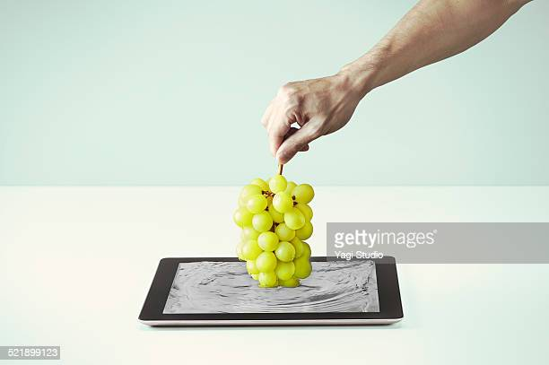 Pull up a muscat from the digital tablet