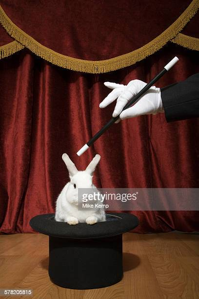 Pulling a rabbit out of a hat.