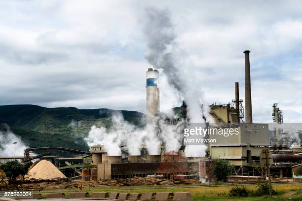 a pulp and paper mill in mpumulanga south africa - mpumalanga province stock pictures, royalty-free photos & images