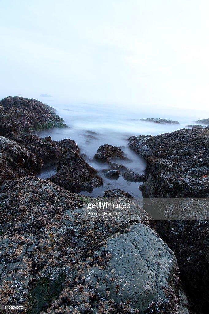 Pulsing Ocean : Stock Photo