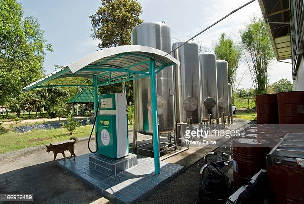 Pump and tanks for vehicles using biodiesel The Thai government launched a biodiesel trial production in April 2005 using raw material such as palm...