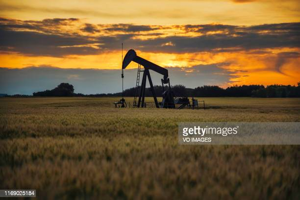pump jack. oil well - hydrocarbon stock pictures, royalty-free photos & images