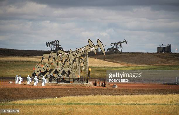 Pump jacks are seen on the Bakken Shale Formation near Williston North Dakota on September 6 2016 Only a few years ago workers from across the US...
