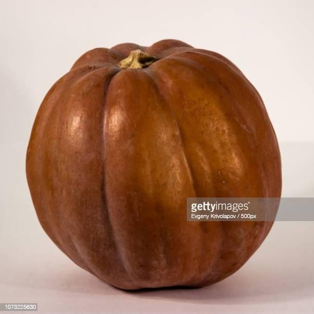 Pumpkin 9745