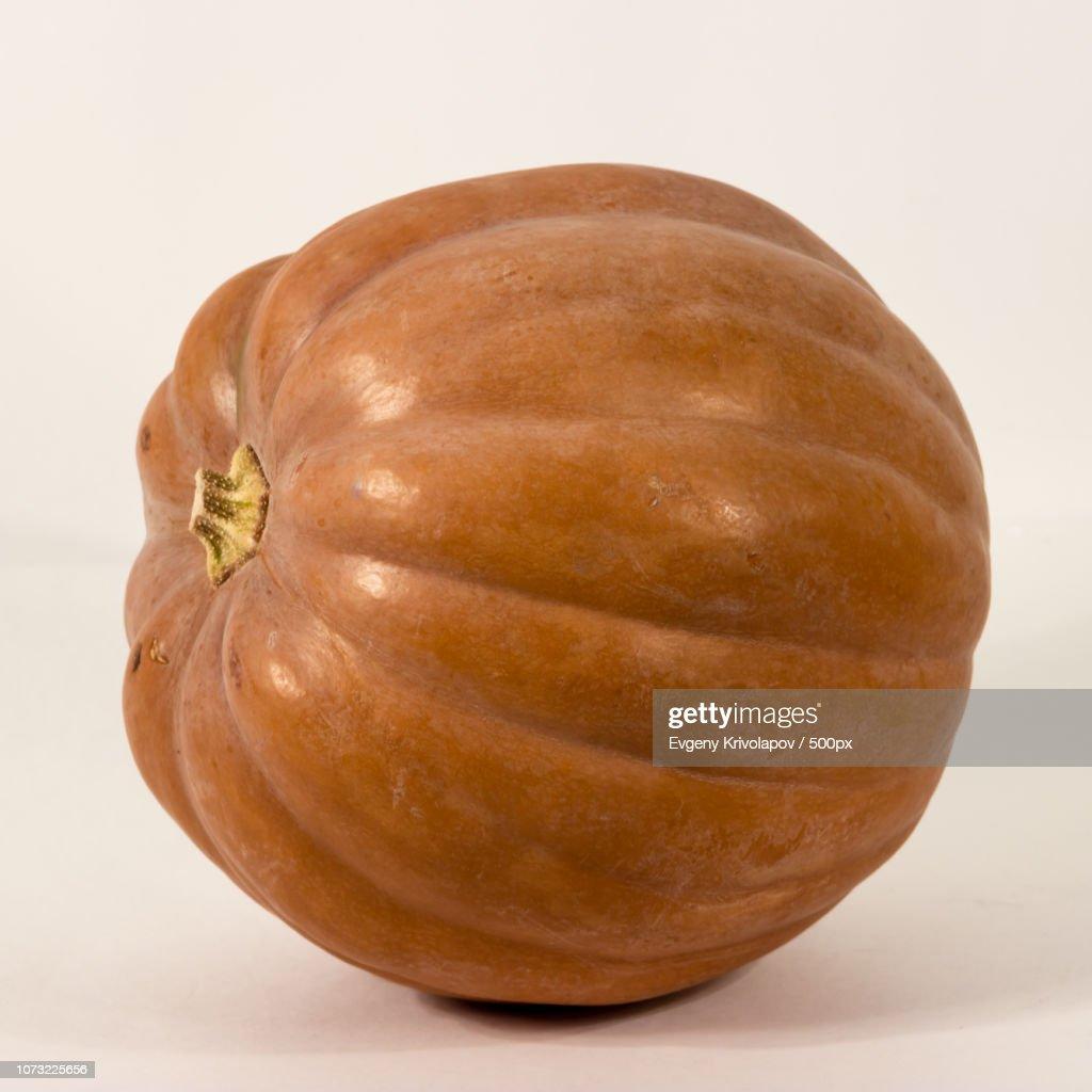 Pumpkin 9764 : Stock Photo