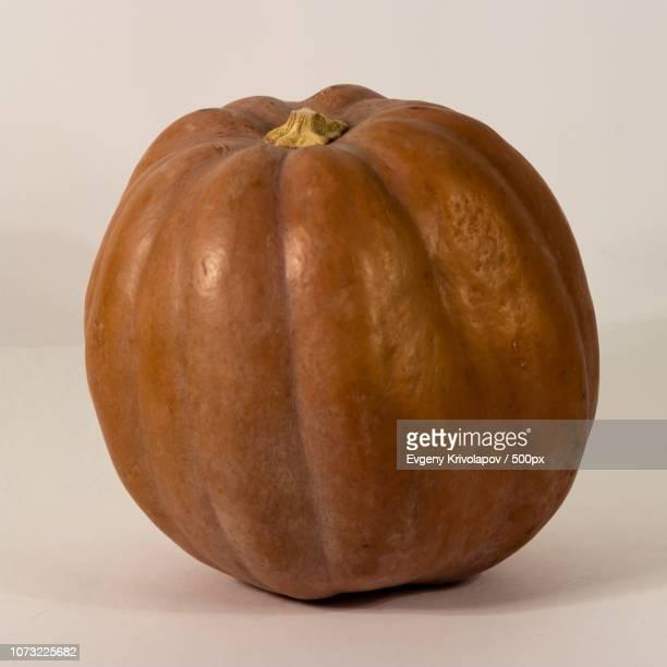 Pumpkin 9771
