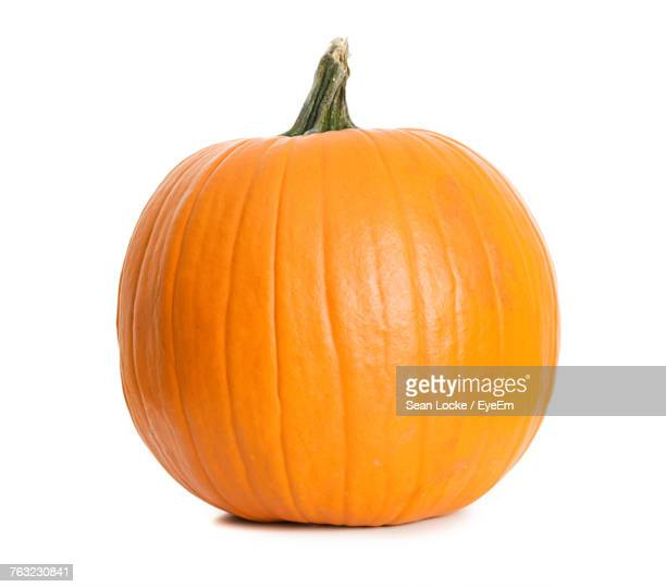 pumpkin against white background - pumpkin stock pictures, royalty-free photos & images