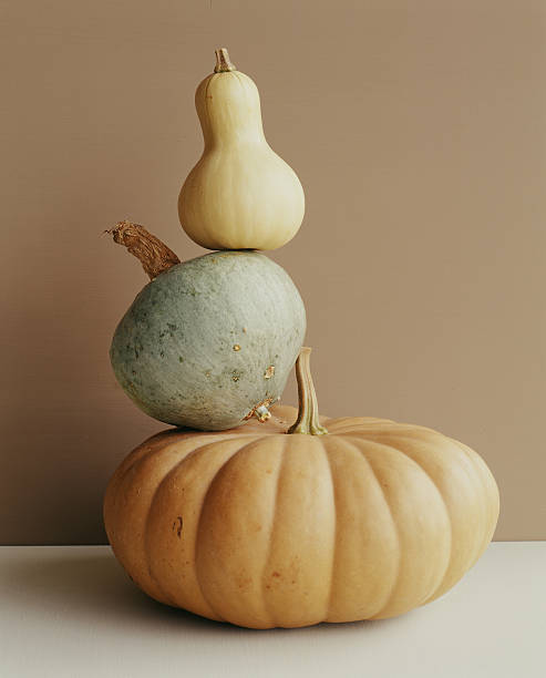 A pumpkin and two gourds.