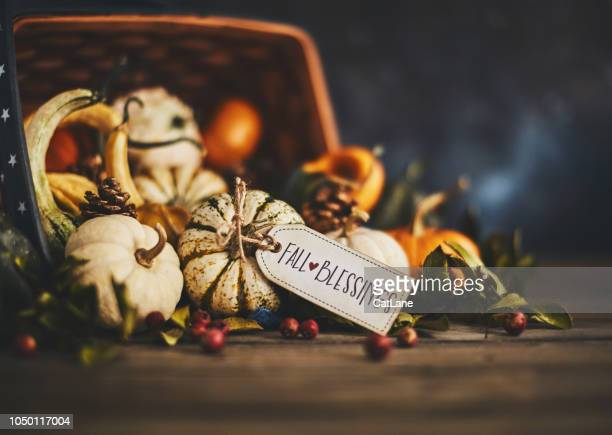 pumpkin assortment still life and blessings greeting - happy thanksgiving card stock pictures, royalty-free photos & images