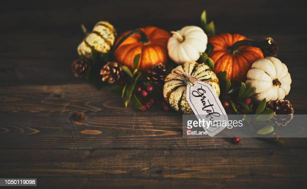 pumpkin assortment still life and grateful message - happy thanksgiving card stock pictures, royalty-free photos & images