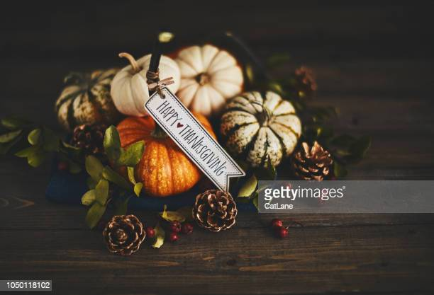 pumpkin assortment still life and happy thanksgiving message - happy thanksgiving card stock pictures, royalty-free photos & images