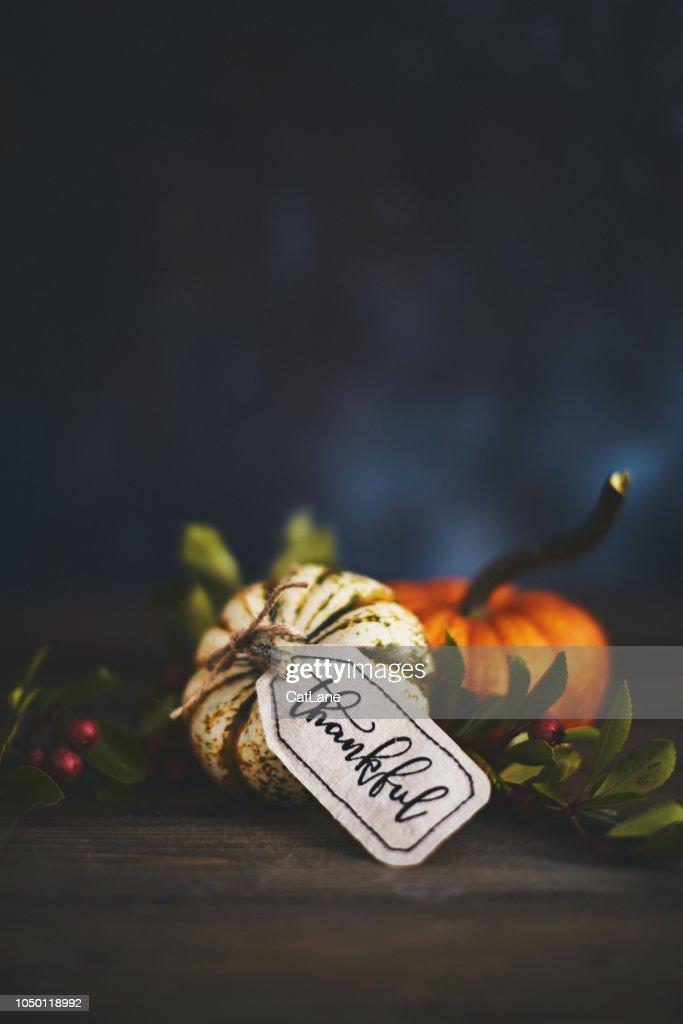 Pumpkin assortment still life and thankful message : Stock Photo