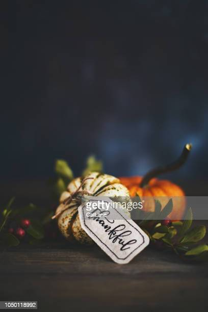 Pumpkin assortment still life and thankful message