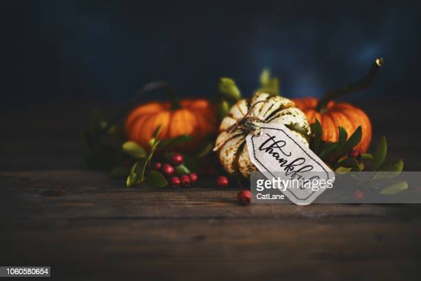 pumpkin assortment still life and thankful message - gratitude stock pictures, royalty-free photos & images