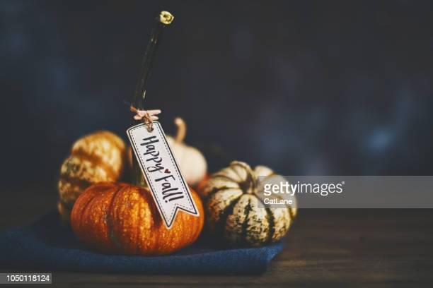 pumpkin assortment still life happy fall message - happy thanksgiving card stock pictures, royalty-free photos & images