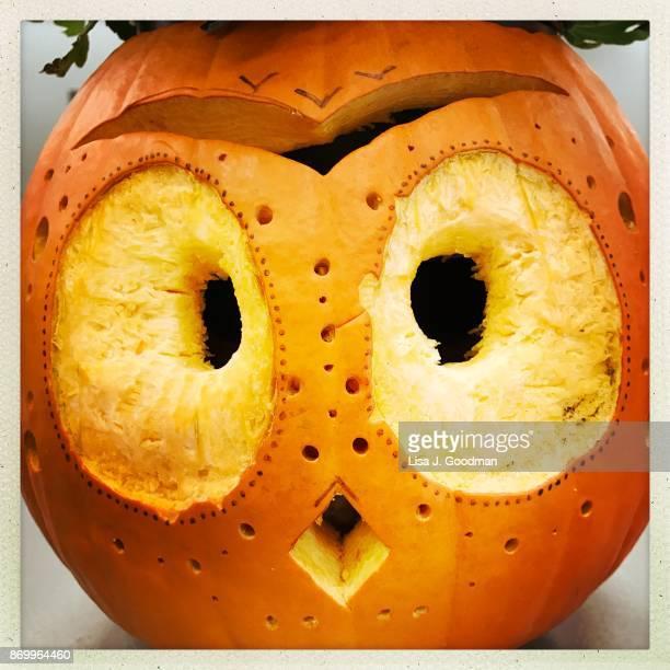 Pumpkin carved like owl