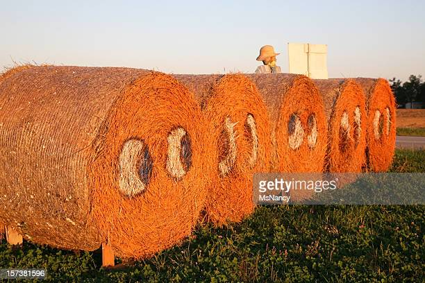 """""""pumpkin face"""" bales of hay - scarecrow faces stock photos and pictures"""