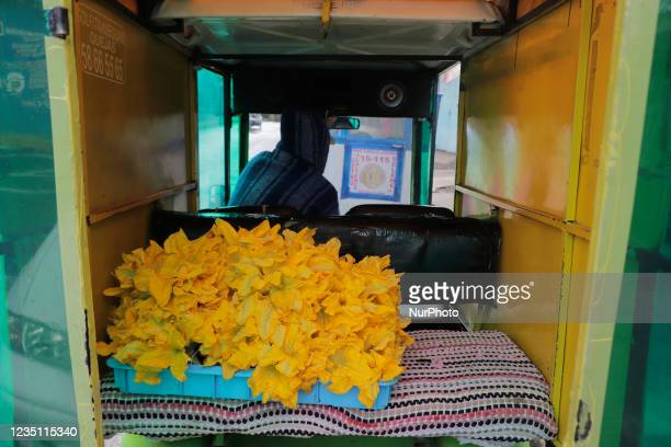 Pumpkin flowers inside a motorbike taxi in San Francisco Tlaltenco in Tláhuac, Mexico City, during the COVID-19 health emergency and the yellow...