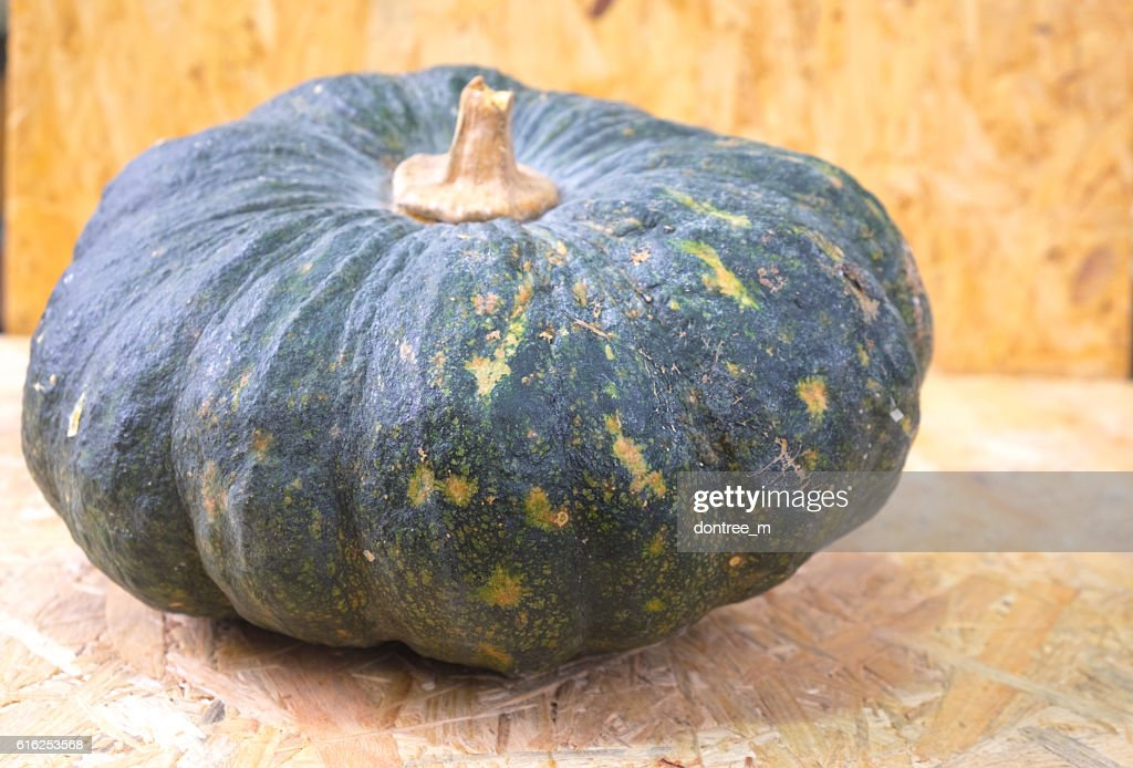 Pumpkin fresh from the garden : Stock Photo