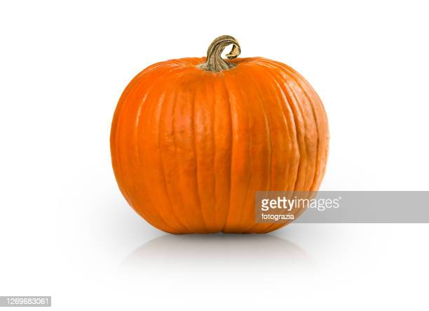 pumpkin isolated with added reflection - gartenkürbis stock-fotos und bilder