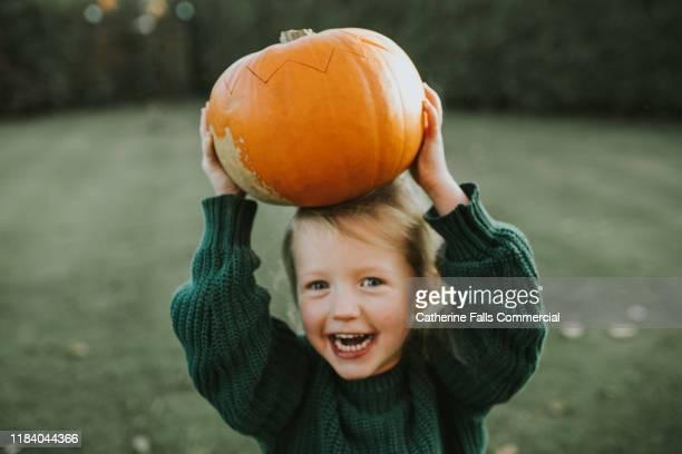pumpkin - ein mädchen allein stock-fotos und bilder