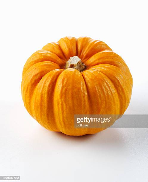 pumpkin - riesenkürbis stock-fotos und bilder