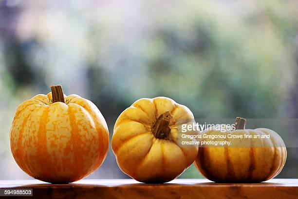 pumpkin squashes - gregoria gregoriou crowe fine art and creative photography. stockfoto's en -beelden