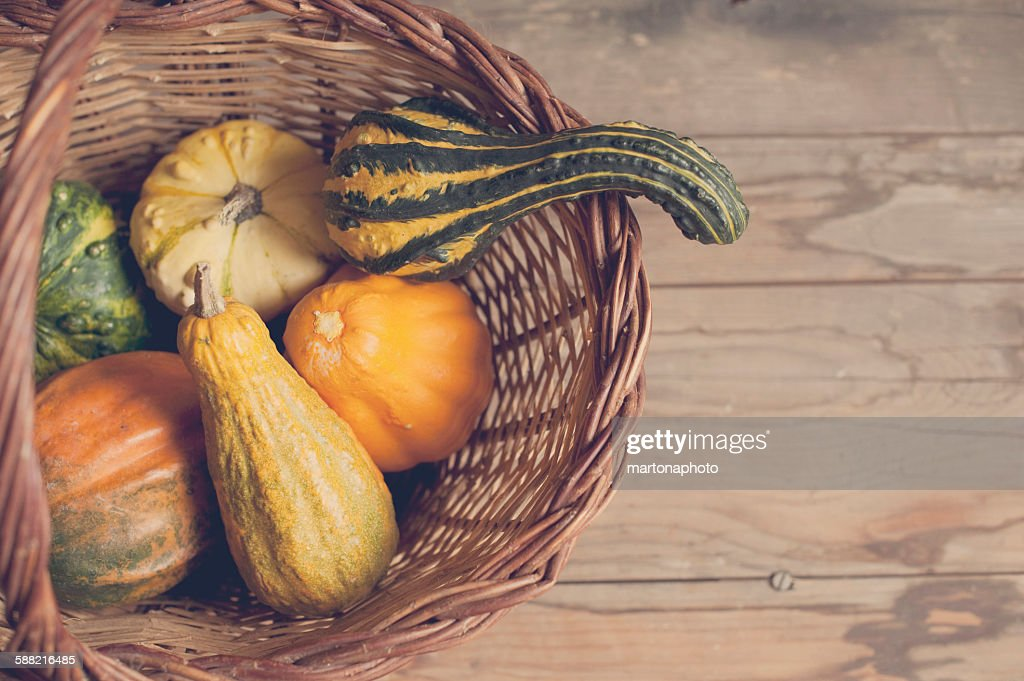 Pumpkins in a basket : Foto de stock