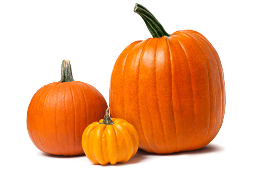 Pumpkins isolated on white with clipping path 155393385