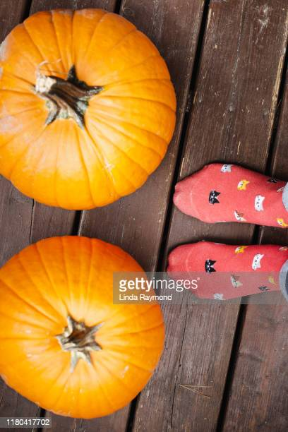pumpkins on a porch - linda wilton stock pictures, royalty-free photos & images
