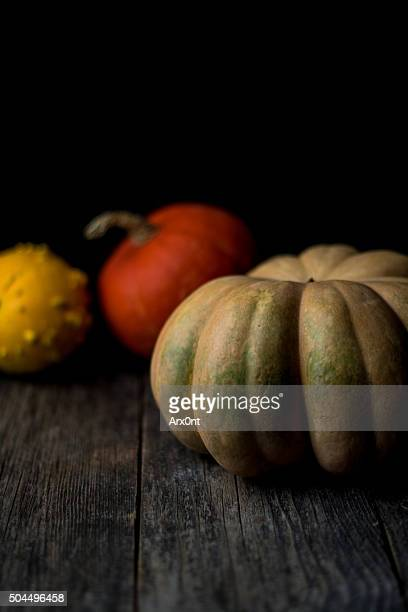 pumpkins - thanksgiving background stock photos and pictures