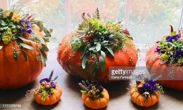 13 580 Halloween Deko Bilder Und Fotos Getty Images