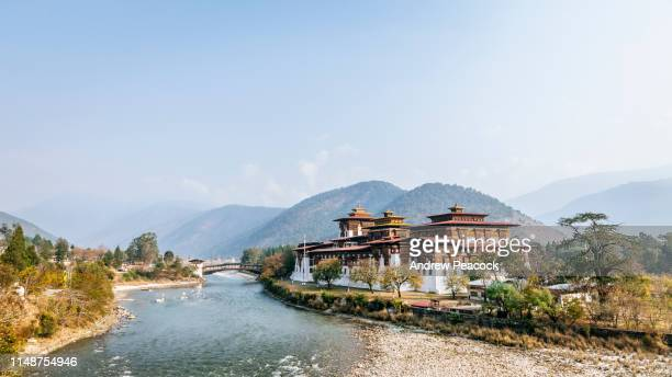 punakha dzong and the mo chhu - bhutan stock pictures, royalty-free photos & images