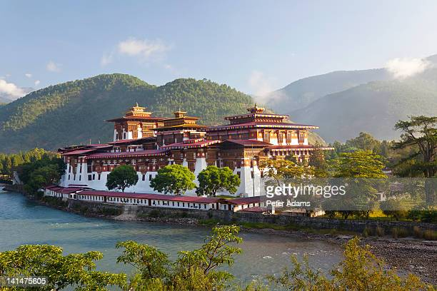 punakha dzong, buddhist monastery, punakha, bhutan - peter adams stock pictures, royalty-free photos & images