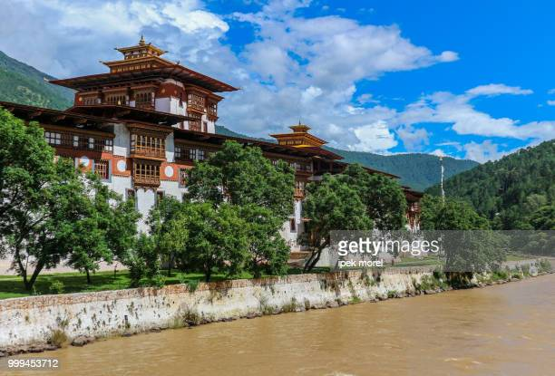 punakha dzong temple, bhutan - ipek morel stock pictures, royalty-free photos & images